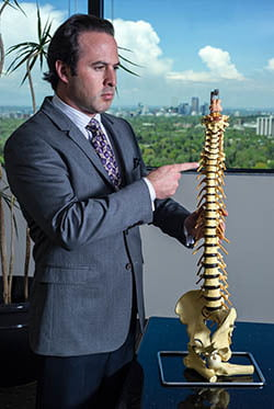 The human spine!